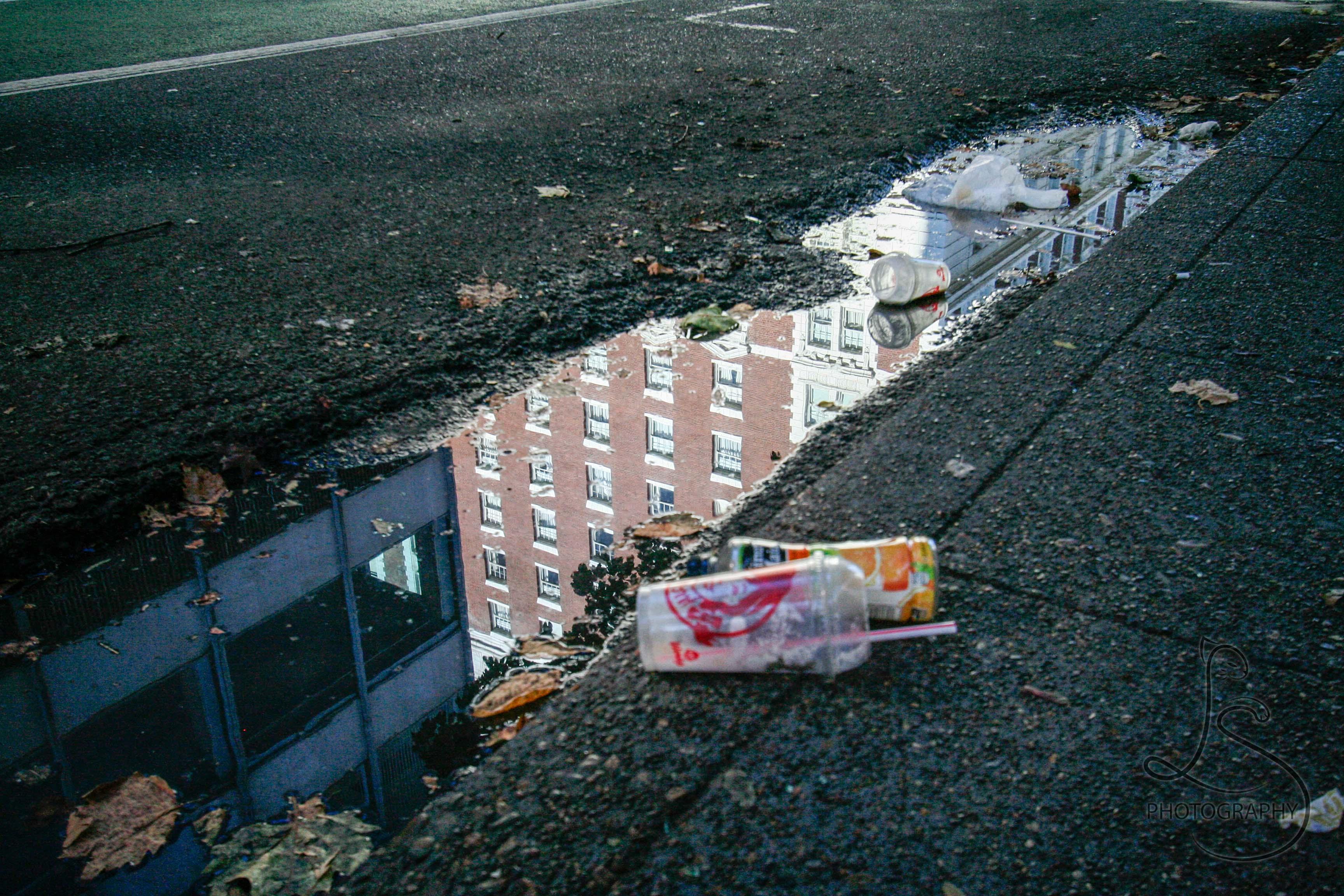 © LotsaSmiles Photography 2013