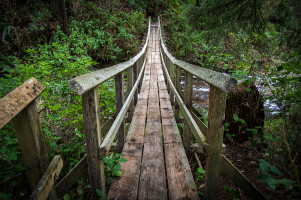 This Week On Instagram | LotsaSmiles Photography | This mysterious bridge from a Pacific Northwest coastal hike was featured in this week's set on Instagram. Click to see the rest!