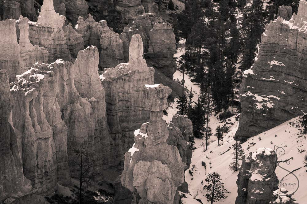 Close-up of the Bryce Canyon hoodoos in sepia tone | LotsaSmiles Photography