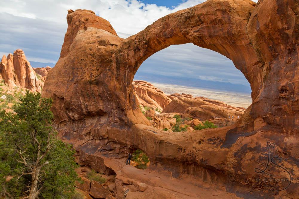 © LotsaSmiles Photography 2016