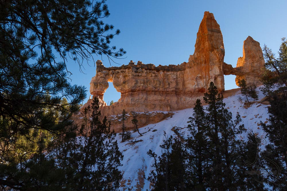 Tower Bridge, backlit, in Bryce Canyon | LotsaSmiles Photography