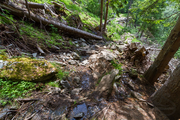The wet/rocky trail/stream to Losta | LotsaSmiles Photography